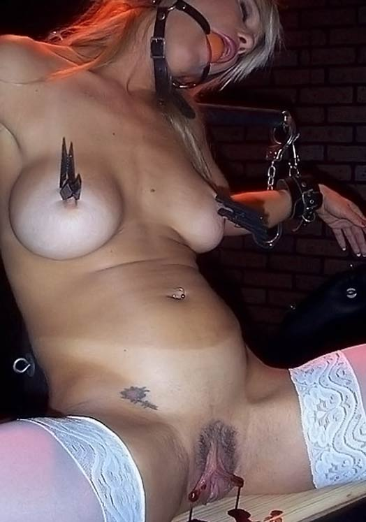 Erotic sex free video clips