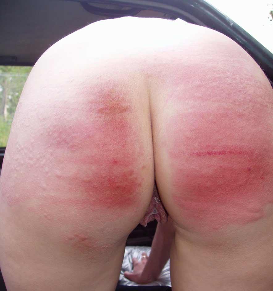 Chasey lane pantyhose
